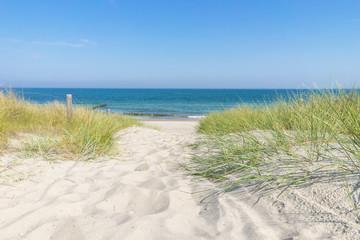 Fototapete - Zugang zur Ostsee