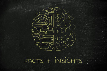 artificial circuits and human brain, facts plus insights