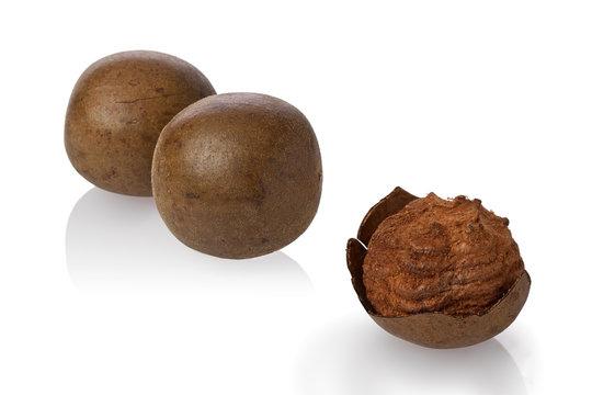 Monk Fruit (Siraitia grosvenorii)