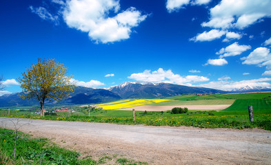 Beautiful landscape, road and green and yellow meadow with field and snow mountain and village.