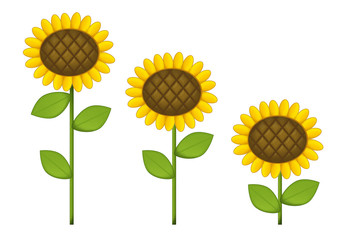 Cartoon scene with sunflowers - isolated - illustration for children