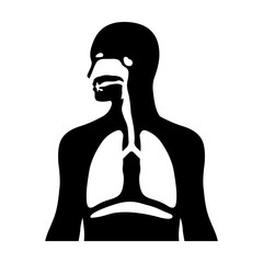 Human biological respiratory system flat icon for medical apps and websites