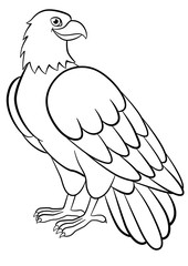 Coloring pages. Wild birds. Cute eagle smiles.