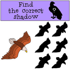 Children games: Find the correct shadow. Cute bald flying eagle.