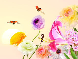Colorful beautiful flowers with butterflies and ladybugs flying around. Sweet sunny sky in the blurred background. Summertime nature abstract