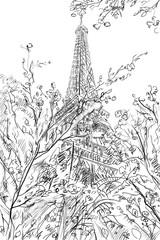 Wall Mural - Street in paris -  sketch illustration concept
