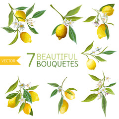 Vintage Lemons, Flowers and Leaves. Lemon Bouquetes. Watercolor
