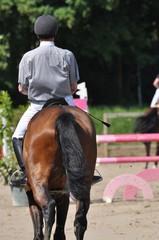 Auf dem Turnierplatz reiten zwischen den Hürden beim Sprinreitturnier, Pferd und Reiter im Detail