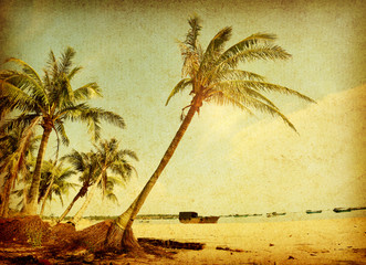 palm tree on old paper background