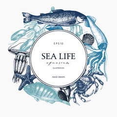 Vector Sea life design. Mussels, fish, crab, starfish, squid, jellyfish, lobster sketch. Hand drawn sea life illustration. Vintage template. Wedding design elements
