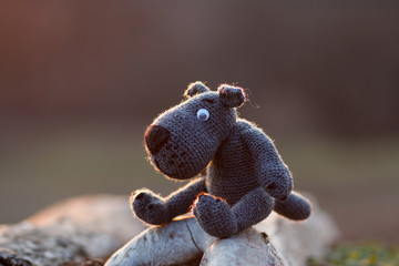 Knitted gray wolf. Related gentle female hands wolf will always delight you with its views.