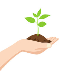 Hand holding a dirt and young tree