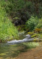 Small creek in Serbia