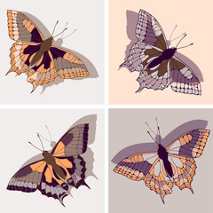a set of four butterfly illustrations in orange and purple shades