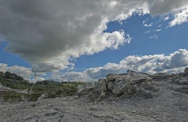 Whakarewarewa Geyser under cloudy sky at Te Puia thermal park in geothermal valley of Rotorua, New Zealand