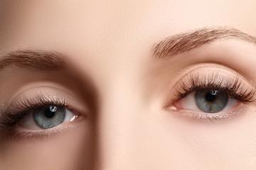Macro shot of woman's beautiful eye with extremely long eyelashes