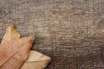 pile of dry leaves in a corner on a wooden texture background