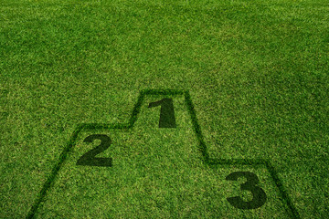 Yard Field with Podium Shadow