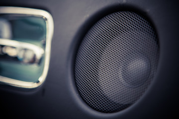 Car speaker detail