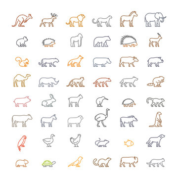 Vector color line set of silhouettes of animals