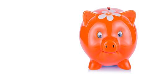 Pig piggy bank on a light background