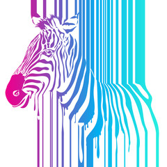 Vector rainbow zebra, abstract animal illustration. Safari zebra can be used for background, card, print materials