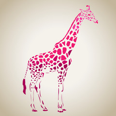 Vector giraffe silhouette, abstract animal illustration. Safari giraffe can be used for background, card, print materials