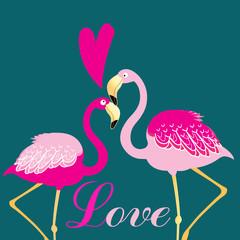 love birds flamingos