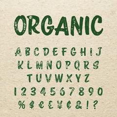 Organic brush script lettering font. Handwritten calligraphic alphabet.