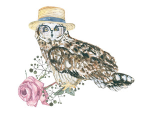 watercolor owl hipster / bird with design elements
