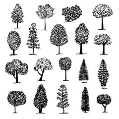 Set of trees icon, sketch style