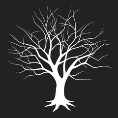 Silhouette of a tree without leaves