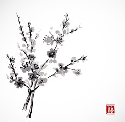 Sakura in blossom. Traditional Japanese ink painting sumi-e. Contains hieroglyph - double luck.