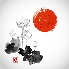 Pink lotus flowers and red sun hand drawn with ink on white background. Contains hieroglyph - beauty. Traditional Japanese ink painting sumi-e