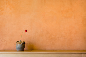 Hintergrund – Wand mit ocker pigmentierter Kalkfarbe antikem Tonkrug und Mohnblume - Background - wall with ocher pigmented lime paint antique clay pot and poppy