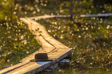 Forgotten hat on wooden path in bog