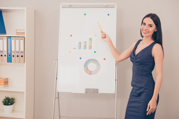 Young pretty businesswoman making presentation of business plan