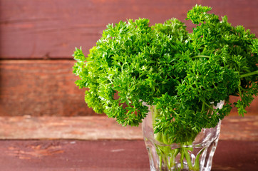 Fresh organic green curly parsley in a glass