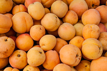 Fresh organic apricots at a local farmers market.