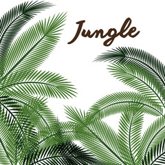 jungle leaves pattern isolated icon design, vector illustration  graphic