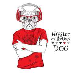 Hipster dressed  dog up in t-shirt and wiht the glasses, headphones. Vector illustration.
