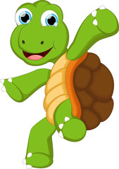 turtle cartoon for you design