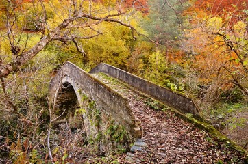 Bridge in Rhodope Mountains