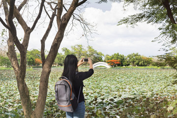 Back or rare view of girl or women shooting photo or video via smartphone at landscape lotus flowers pond with bridge and sunny sky view,girl and nature in public park