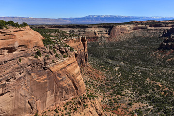 Colorado National Monument - Monument Canyon