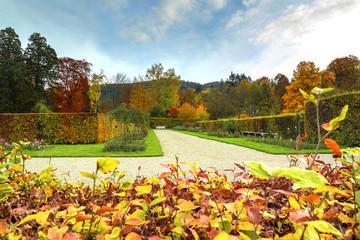 Autumn Colors. Beautiful Autumn Landscape