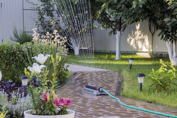 Irrigation system - technique of watering in the garden.