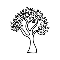 olive tree isolated icon design