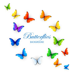 Multicolored butterflies background