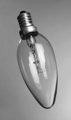 Light bulb on grey background
